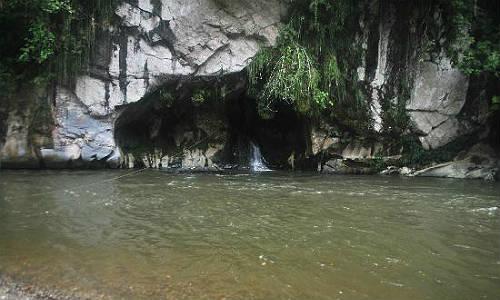 Cuevas Los Guácharos