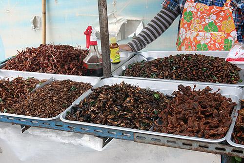 Gastronomía de insectos en Camboya