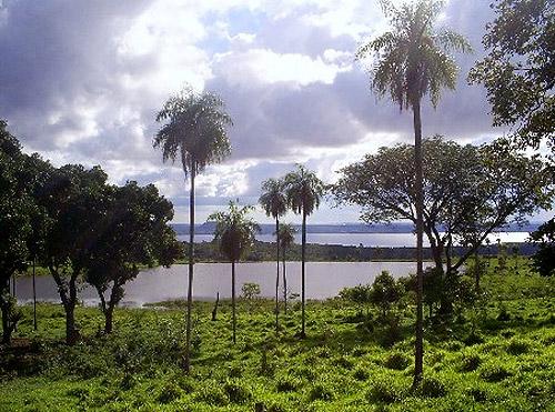 Reserva del Mbaracayú