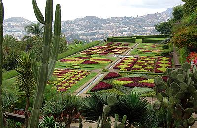 Madeira, la isla de la eterna primavera - Foto 3