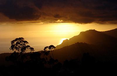 Madeira, la isla de la eterna primavera - Foto 4